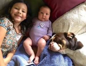 Interspecies Featured Royal Frenchel Dog With Family
